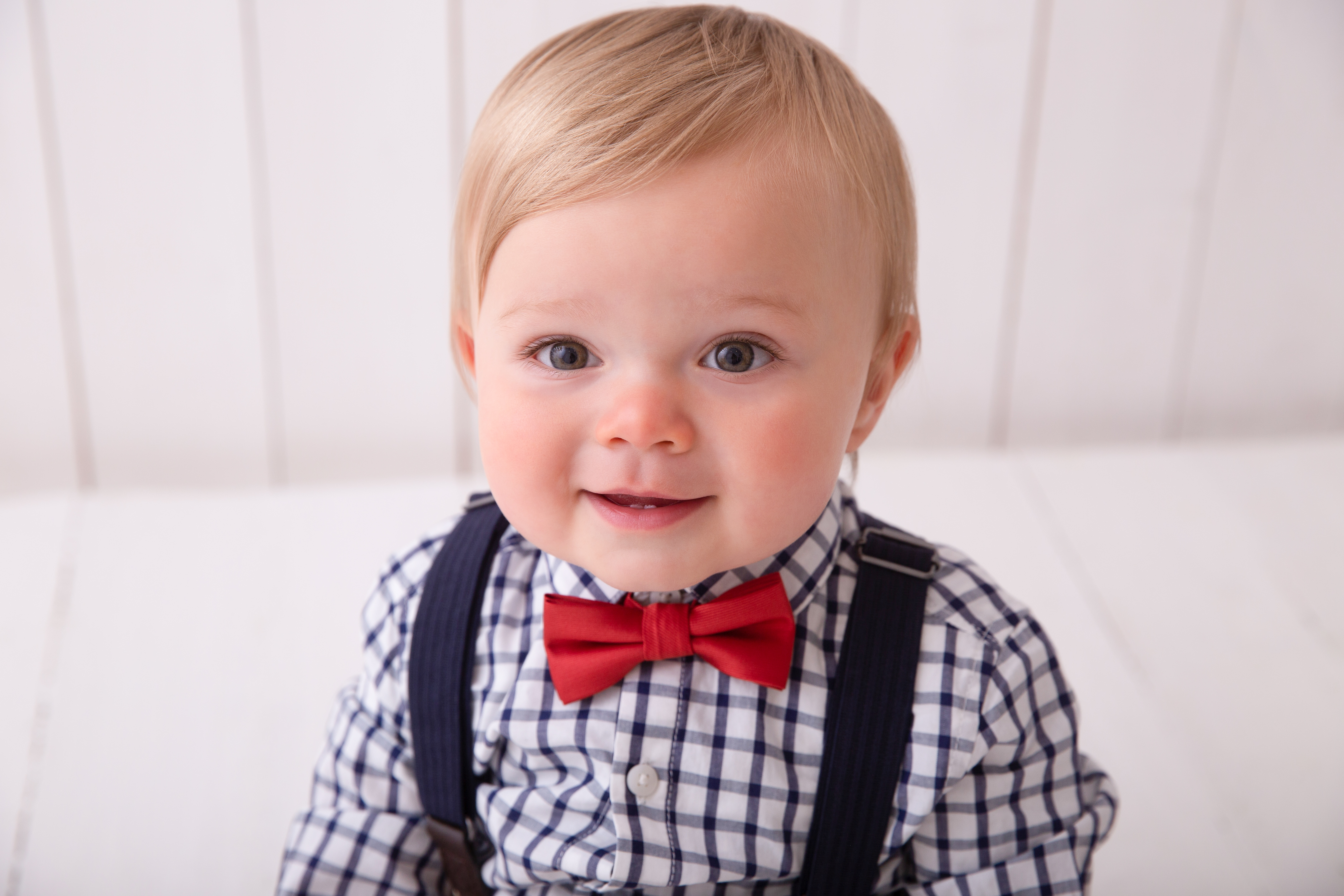 Norwich cute baby with bow tie