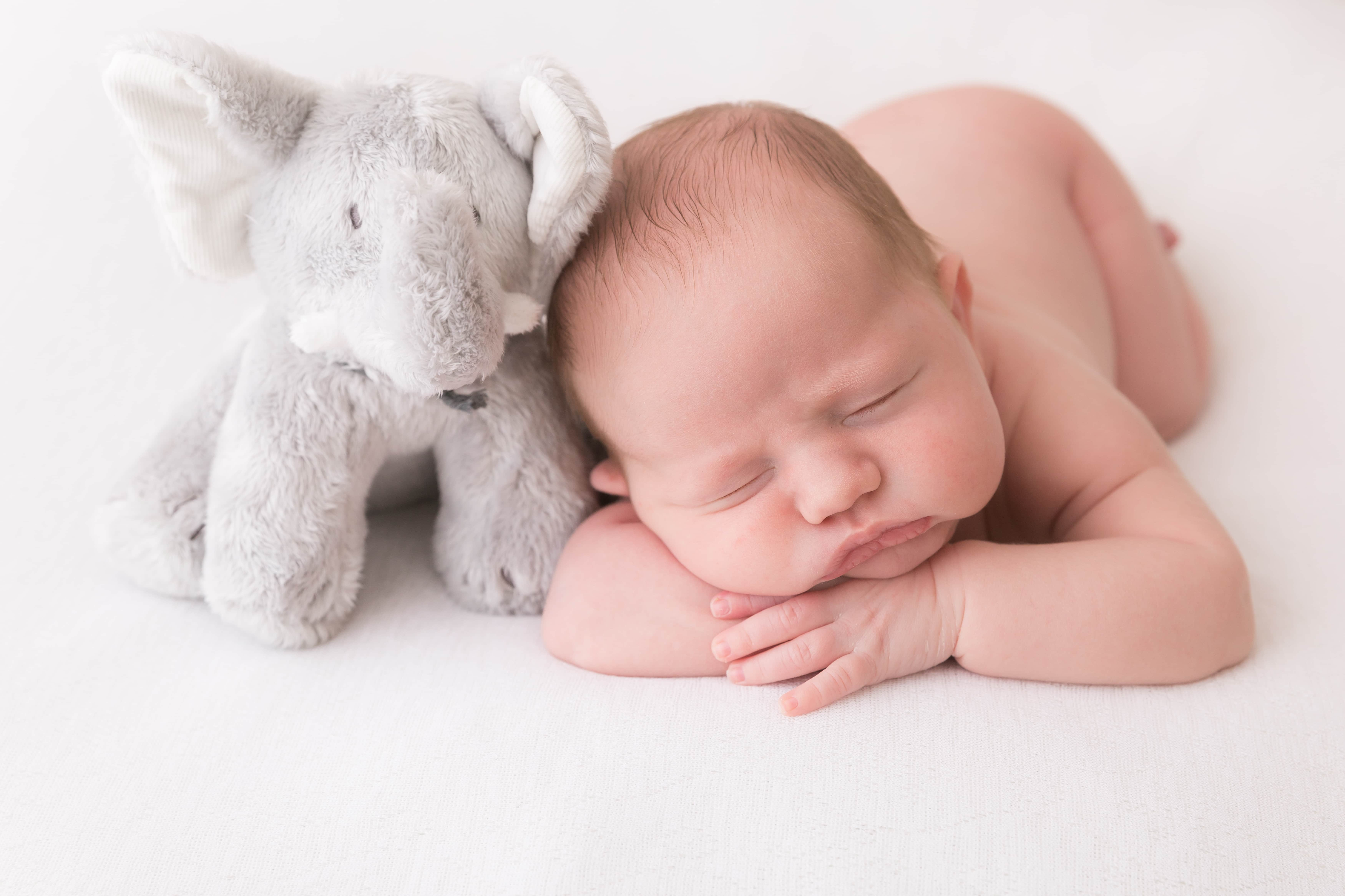 newborn with a teddy elephant