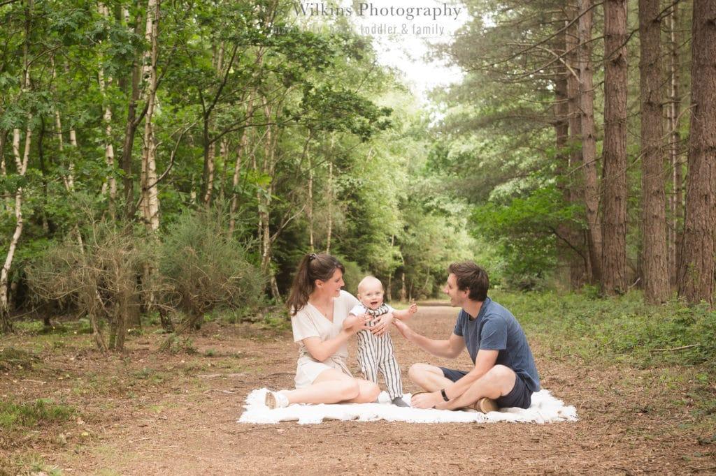 woodland Norwich